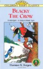 Blacky the Crow, by Thornton Burgess