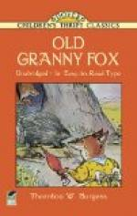 Old Granny Fox by Thornton Burgess