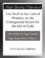 Tom Swift in the Land of Wonders, or, the Underground Search for the Idol of Gold by Victor Appleton