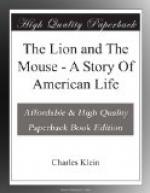 The Lion and the Mouse; a Story of an American Life by