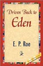Driven Back to Eden by Edward Payson Roe