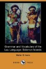 Grammar and Vocabulary of the Lau Language by