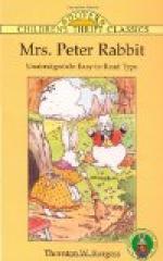 Mrs. Peter Rabbit by Thornton Burgess