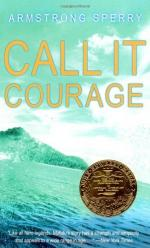 Call It Courage by