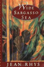 Sargasso by Jean Rhys