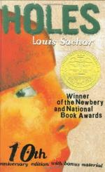 Holes, A Review and Plot Summary by Louis Sachar