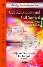 The Process of Cell Respiration by