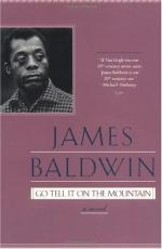 Sexual Identity in Go Tell it On the Mountain by James Baldwin