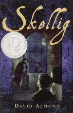 Analysis of Skellig by David Almond
