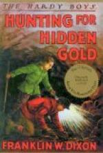 Hardy Boys Hunt for Hidden Gold by