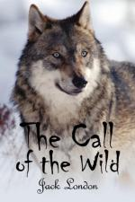 "Buck's Character Change in Chapter #4 of ""The Call of the Wild"" by Jack London by Jack London"