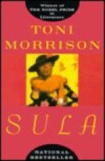 Good and Evil in Toni Morrison's Sula by Toni Morrison