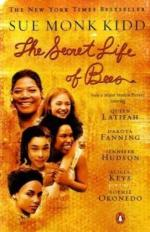 The Journey of Lily in The Secret Life of Bees by Sue Monk Kidd