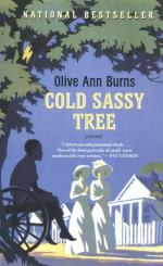 Cold Sassy's Different Views of Racism by Olive Ann Burns