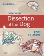 Arguments Against Animal Dissection in Secondary School by