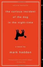 The Curious Incident of the Dog in the Night-time - Abbey Flanagan by Mark Haddon
