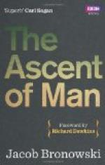 """the Ascent of Man"" [key Passage] Pg. 348 - 351 by"