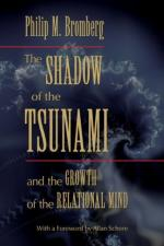 The Nightmare of the Tsunami by