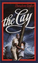 The Cay Summary by Theodore Taylor