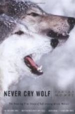 "Caribou-Wolf Myths in ""Never Cry Wolf"" by Farley Mowat"