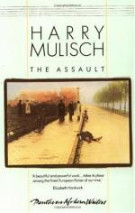"The Pain of Memories in ""The Assault"" by Harry Mulisch"