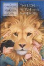 "Characters and Plot of  ""The Lion, the Witch and the Wardrobe"" by C. S. Lewis"