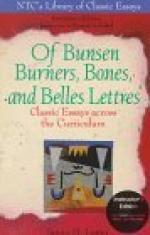Bunsen Burner by