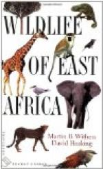 East African Religions by