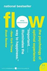 Flow Experience by