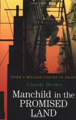 Manchild in the Promised Land by