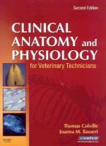 Molecular Biology and Molecular Genetics by