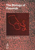 Plasmid by
