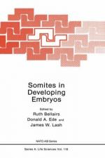 Somites by