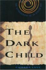 The Dark Child by Camara Laye