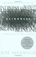 Visual Impairment and Blindness by José Saramago