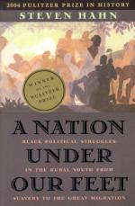 A Nation Under Our Feet: Black Political Struggles in the Rural South from Slavery to the Great Migration by Steven Hahn
