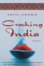 Cracking India by