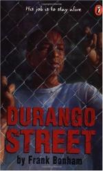 Durango Street by Frank Bonham