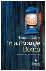 In a Strange Room by Damon Galgut