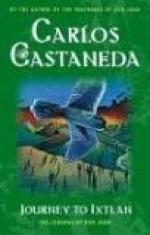 Journey to Ixtlan: The Lessons of Don Juan by Carlos Castaneda