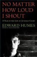 No Matter How Loud I Shout: A Year in the Life of Juvenile Court by Edward Humes