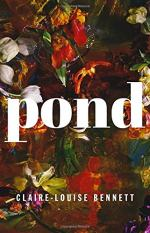 Pond: A Novel by Claire-Louise Bennett