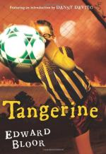 Tangerine by Edward Bloor