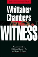 Witness by Liz Waldner