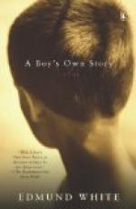 A Boy's Own Story by
