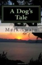 A Dog's Tale by Mark Twain