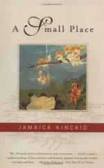 A Small Place by Jamaica Kincaid