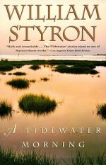 A Tidewater Morning by William Styron