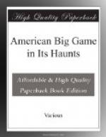 American Big Game in Its Haunts by