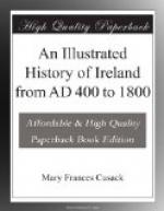 An Illustrated History of Ireland from AD 400 to 1800 by Mary Frances Cusack